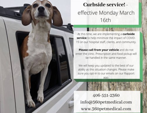 360˚ Pet Medical's Response to COVID-19/Coronavirus